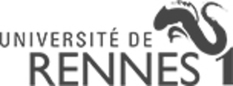 UNIVERSITÉ RENNES 1 - SERVICE DE FORMATION CONTINUE
